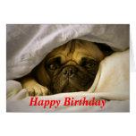 Alles- Gute zum GeburtstagMops-Welpen-Hundegruß-Ka