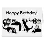 Alles- Gute zum GeburtstagSmokings-Katzen-Karte