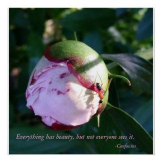Alles hat Schönheits-Konfuzius-Zitat mit Blume Poster