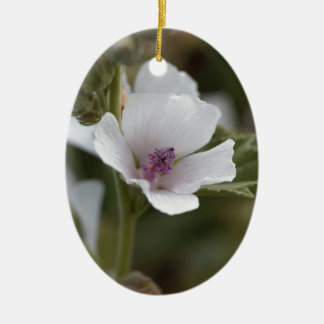 Allgemeine Sumpfmalve, Althaea officinalis Keramik Ornament