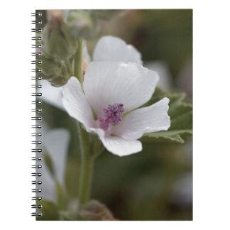 Allgemeine Sumpfmalve, Althaea officinalis Spiral Notizblock