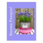 Allgemeiner blauer hyacints Ostern-Gruß - Postkarte