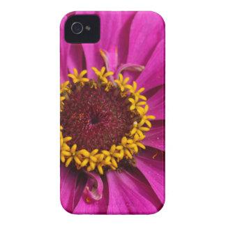 Allgemeiner Zinnia (Zinnia elegans) iPhone 4 Cover