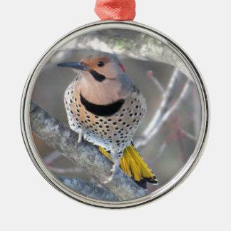 Allgemeines Aufflackern Silbernes Ornament