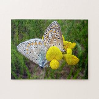 Allgemeines blaues Schmetterlings-Foto-Puzzlespiel Puzzle