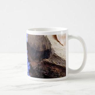 Allgemeines Hepatica (Hepatica nobilis) Kaffeetasse