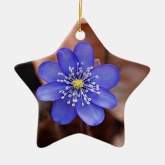Allgemeines Hepatica (Hepatica nobilis) Keramik Ornament