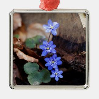 Allgemeines Hepatica (Hepatica nobilis) Silbernes Ornament