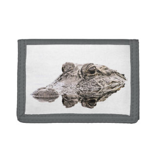 Alligatorgeldbörse