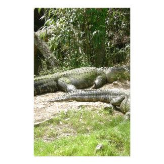 Alligatorgruppe Briefpapier