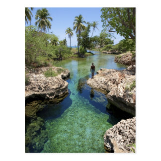 Alligatorloch, schwarze Fluss-Stadt, Jamaika Postkarte