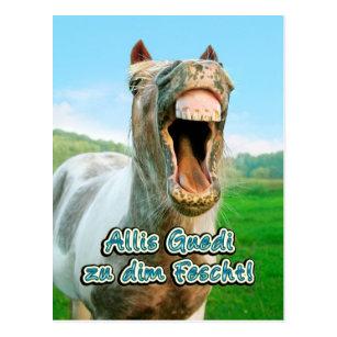 Lustig Pferd Geburtstag Postkarten Zazzle De
