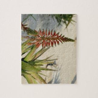 Aloe-Blumen-Blüten-Foto-Puzzlespiel mit Puzzle