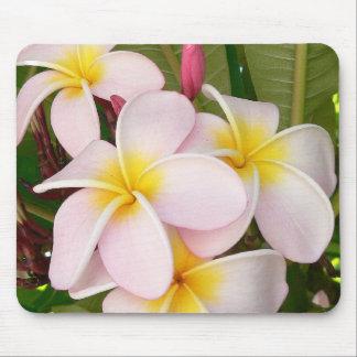 Aloha blüht hawaiischer Frangipani Brautparty Mauspads
