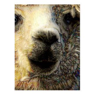 Alpaka grüßt Dich weltweit Postkarte