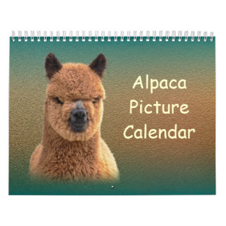 Alpaka-Kalender 2018 Wandkalender