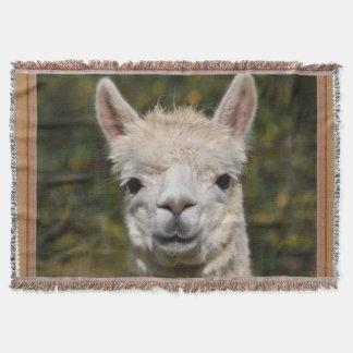 Alpaka-Lama-Fotografie Decke