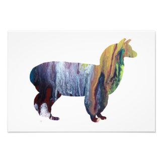 Alpaka-Silhouette Fotodrucke