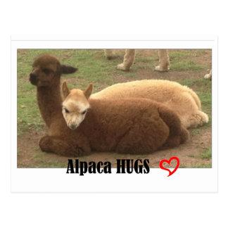 Alpaka umarmt Postkarte
