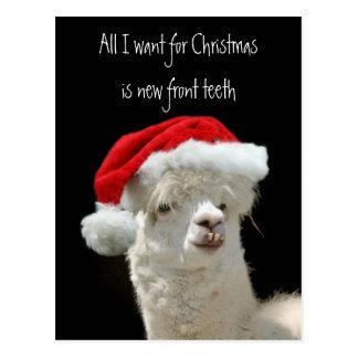 Alpaka-Weihnachten Postkarte