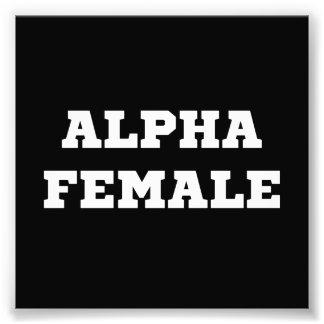 Alphafrau Fotos