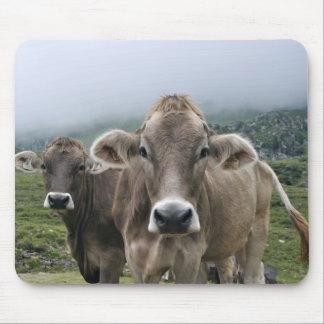 Alpine Kühe Mauspad