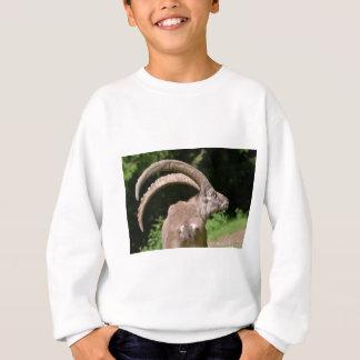Alpiner Steinbock der Nahaufnahme Sweatshirt