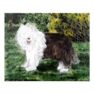 Alte englische Schäferhund-Kunst Fotodruck