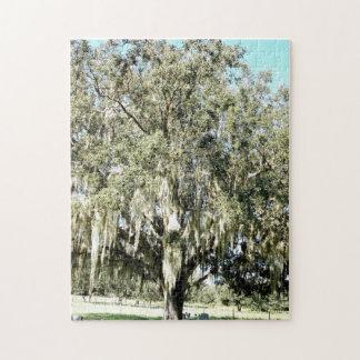 Alte moosige Florida-Eichen-Puzzle Puzzle