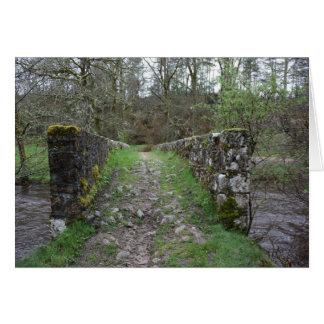 Alte moosige römische Steinbrücke in einem Wald Karte