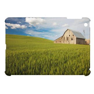 Alte Scheune umgeben durch Frühjahrsweizen-Feld 2 Hüllen Für iPad Mini