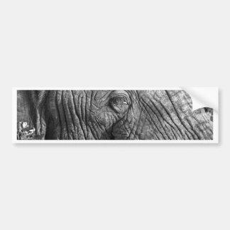 Alter afrikanischer Elefant Autoaufkleber