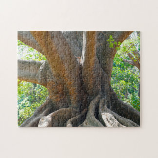 Alter alter 200 Jährige Baum-Bangalore-Garten Foto Puzzles