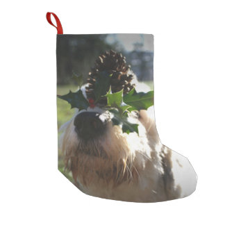Alter englischer Schäferhund-balancierende Kleiner Weihnachtsstrumpf