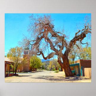 Alter hängender Baum, Cerrillos, New Mexiko Poster