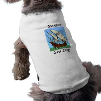 Alter Hund YE See Top