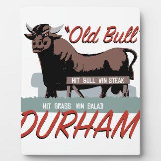 Alter Stier Durham Fotoplatte