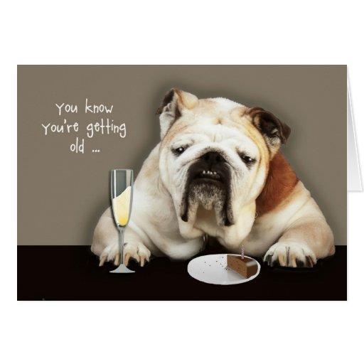 ältere, lustige Geburtstagskarte, Hund erhalten Karte | Zazzle: www.zazzle.de/altere_lustige_geburtstagskarte_hund_erhalten...