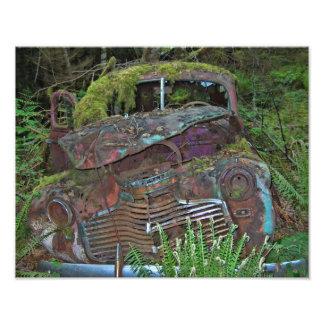 Altes Auto-Wrack im WaldFoto Fotos