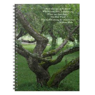 Altes Baum-Foto-Notizbuch (80 Seiten B&W) Notizblock