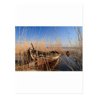 Altes hölzernes Boot in den Schilfen Postkarte
