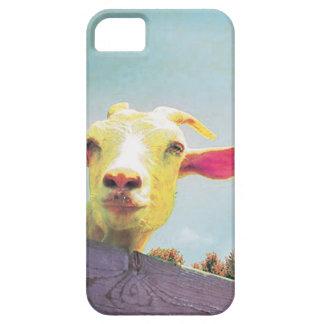 Am beststen von allen rosa ohrige Ziege der Zeit Hülle Fürs iPhone 5