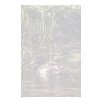 Am Rand des Teichs Briefpapier