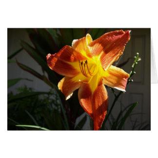 Amaryllis-Blumen Notecard Karte
