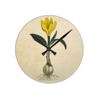 Amaryllis-botanischer Vintager Garten-Druck Runde Wanduhr
