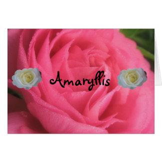 Amaryllis Karte