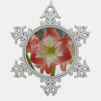 Amaryllis Rot-Feiertags-dem Winter in des Schnee-I Schneeflocken Zinn-Ornament