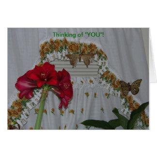 Amaryllis u. Schmetterlinge, denkend an Sie Karte
