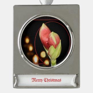 Amaryllis-Weihnachten Banner-Ornament Silber