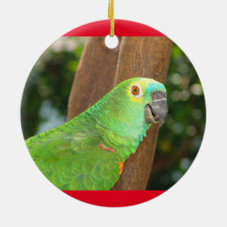 Amazonas-Papageien-Feiertags-Verzierung Keramik Ornament
